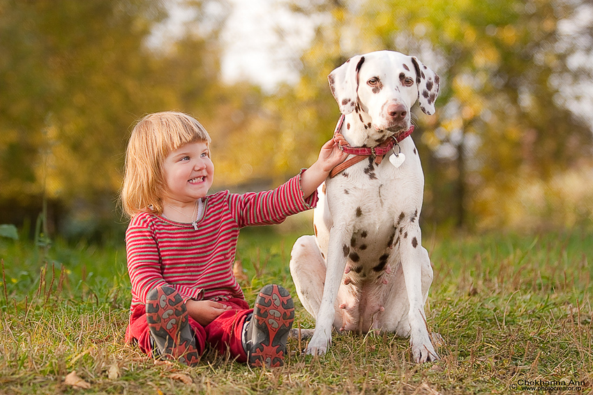 Если в доме есть собака то дети