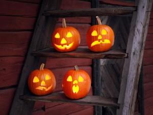 Halloween-Holiday-Pumpkin-Ladder-768x1024