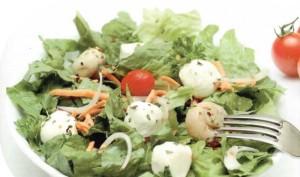 36054065-dieticheskie-salaty-pri-bolezni-gastrita