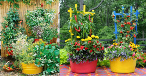 14-Stunning-Container-Vegetable-Garden-Design-Ideas-Tips3-1
