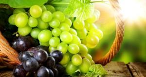 7383-black-white-grapes-wallpaper-desktop-wallpapers-1200x630